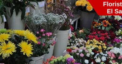 floristerias en el salvador, enviar flores a el salvador