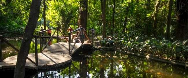 jardin botanico la laguna, atractivo turistico de el salvador