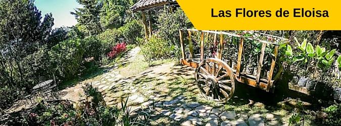 Las Flores de Eloisa, Vivero, Cafe y Cabañas, Apaneca - Ataco, El Salvador
