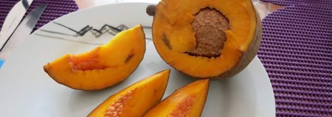el mamey, fruta de el salvador