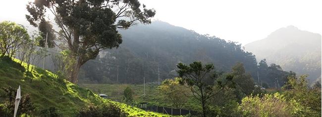 cerro verde, lugar turistico de el salvador